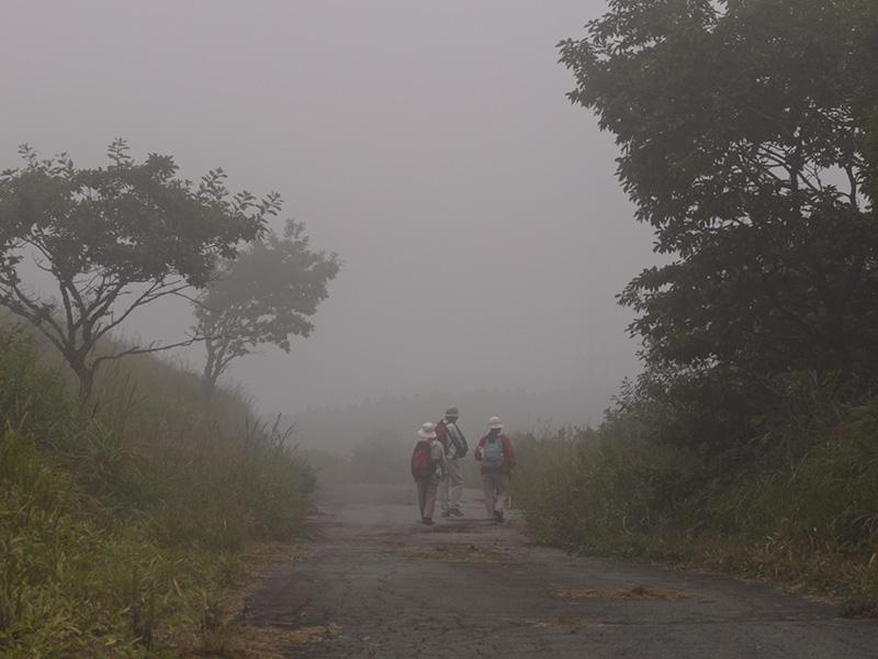 大分県はくじゅう、ミソコブシ山に行ってきました。その1_a0037907_21284250.jpg
