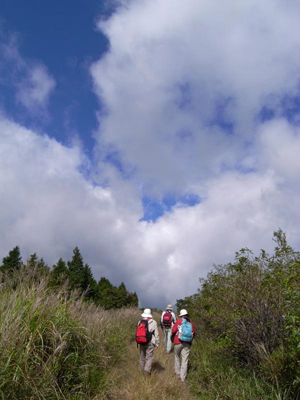 大分県はくじゅう、ミソコブシ山に行ってきました。その1_a0037907_21321855.jpg