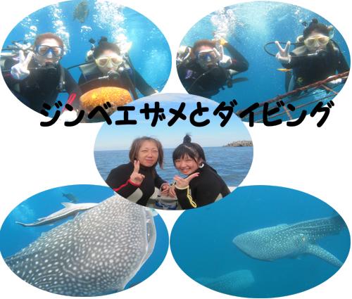 10月11日連休最終日にふさわしい天気_c0070933_22395746.jpg