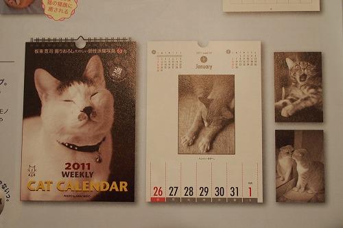『パトラ、カレンダーに採用される』 の巻_e0160595_2053270.jpg