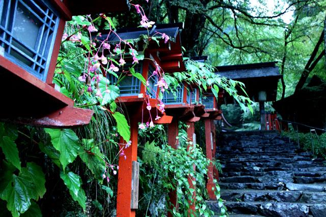 貴船神社の朝_e0048413_196910.jpg