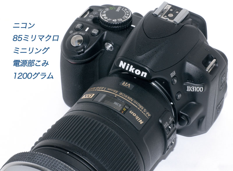 f0103459_12555948.jpg
