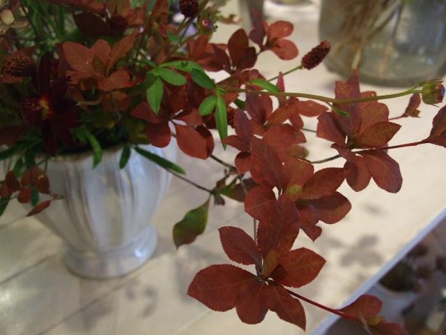 オークリーフ花の教室(吉田さんの作品)_f0049672_1374444.jpg