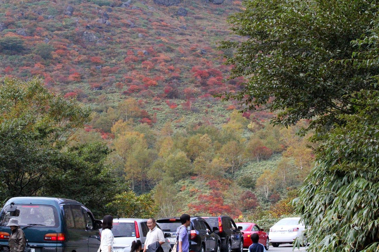 那須・茶臼岳(ちゃうすだけ)は雨だった_a0107574_19445047.jpg