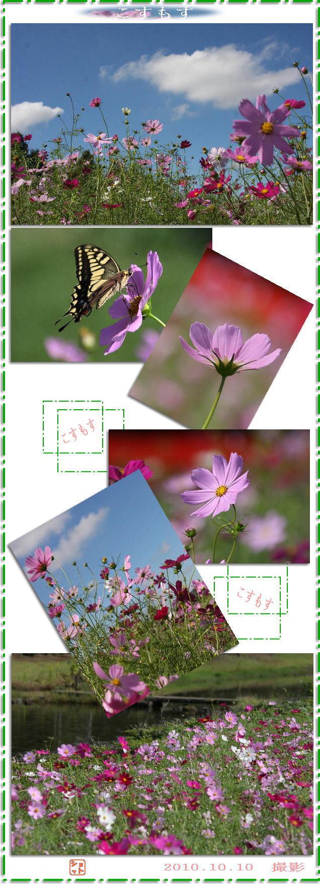 f0164592_775883.jpg