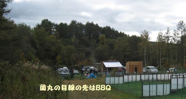 f0212597_10412832.jpg