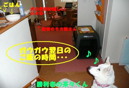 f0121712_14251016.jpg