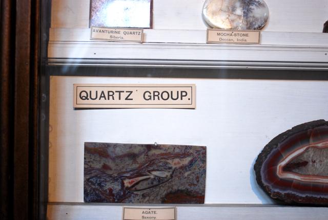 自然史博物館はレタリング博物館_e0175918_1132961.jpg