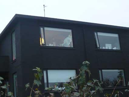 ビョークの自宅の窓にはムーミンが。家庭料理でリラックスのアイスランド滞在_c0003620_765745.jpg