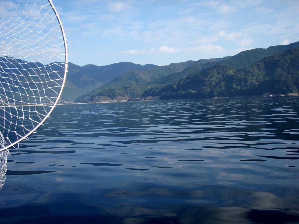 2010年10月13日(水) 三重県賀田湾 2馬力ボート釣り_d0171823_2312453.jpg