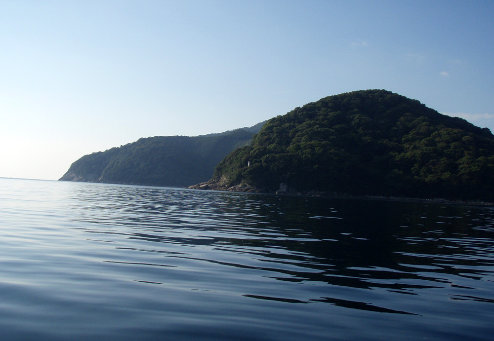 2010年10月13日(水) 三重県賀田湾 2馬力ボート釣り_d0171823_2336258.jpg