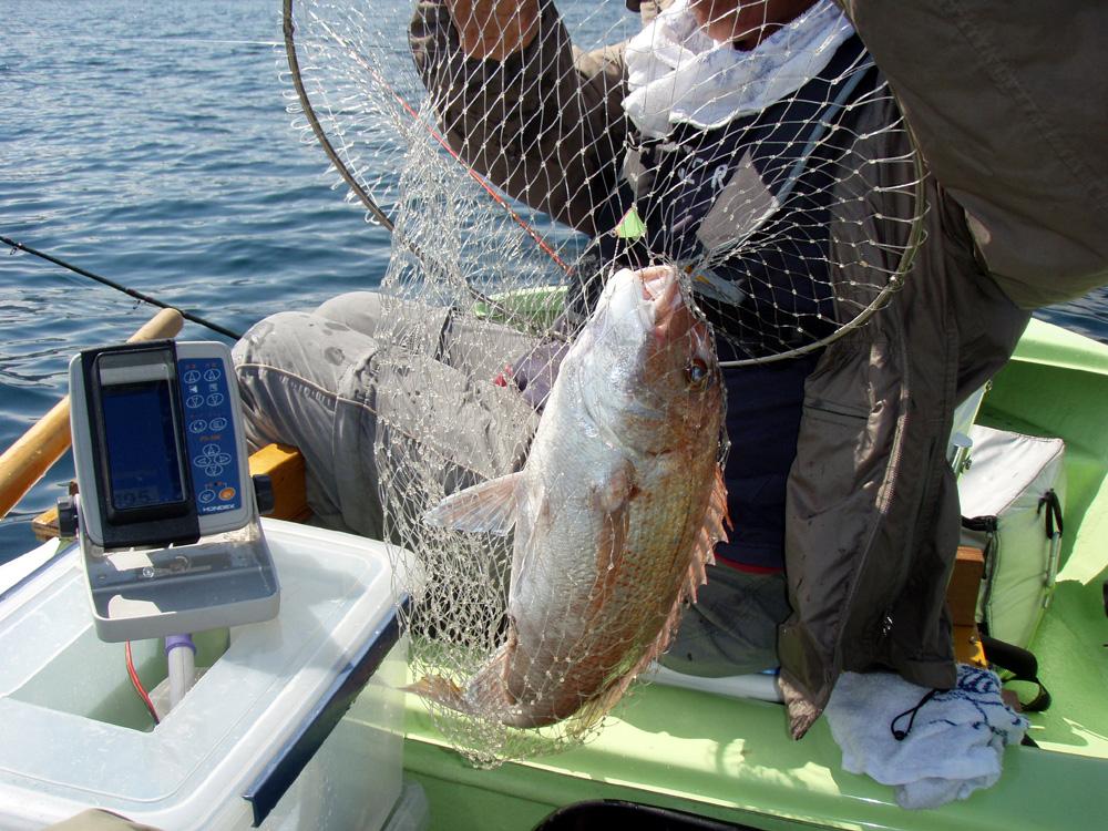 2010年10月13日(水) 三重県賀田湾 2馬力ボート釣り_d0171823_23565165.jpg