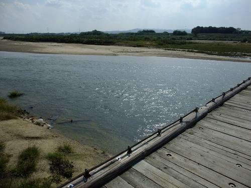 休日ライド 池田~大山崎~流れ橋 サイクリングコースのご紹介_d0174462_23132239.jpg