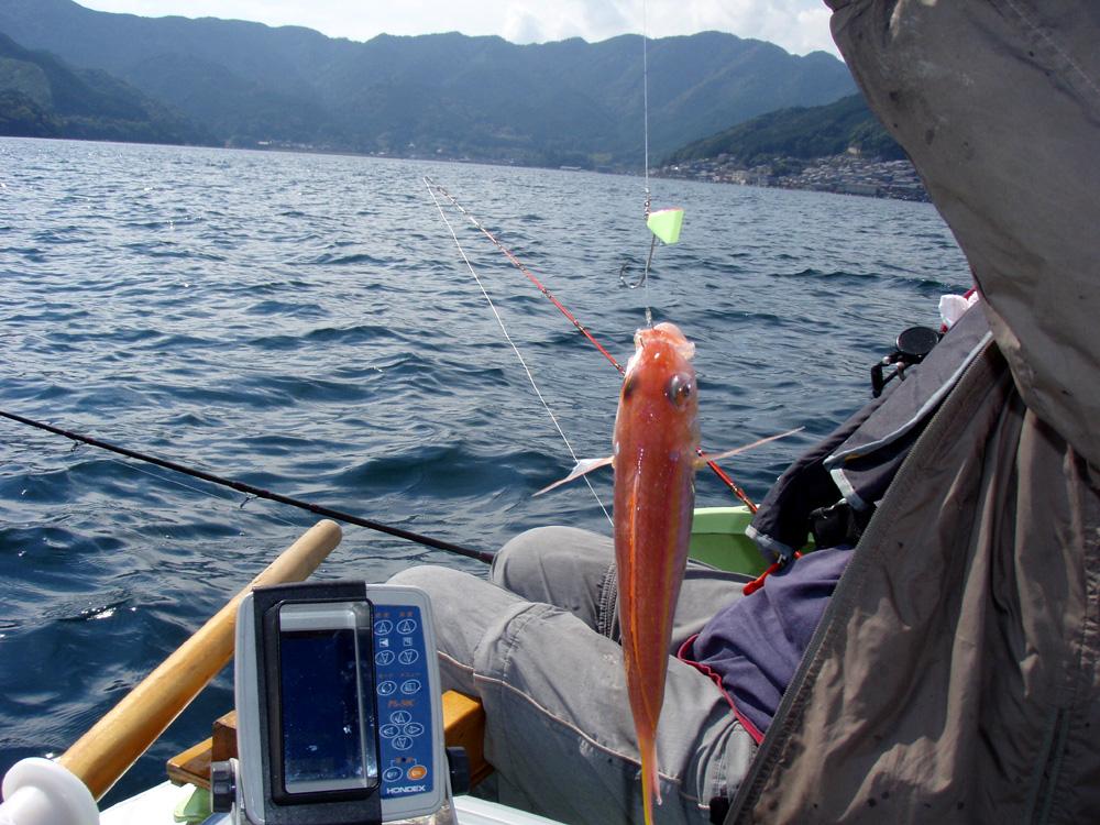 2010年10月13日(水) 三重県賀田湾 2馬力ボート釣り_d0171823_034861.jpg