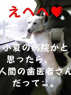 f0148927_18163286.jpg