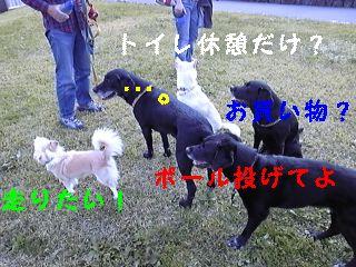f0148927_18271633.jpg