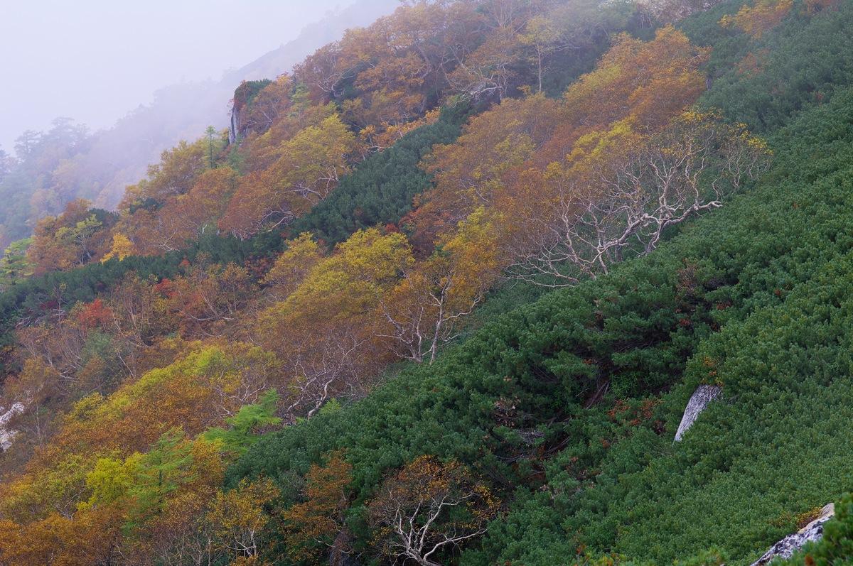 燕岳登山 その7(最終回) 燕山荘に戻る+α_a0060230_22162932.jpg