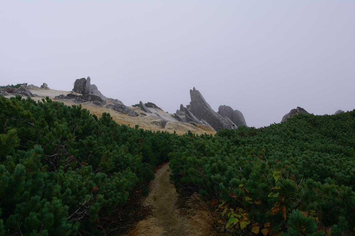 燕岳登山 その7(最終回) 燕山荘に戻る+α_a0060230_22172426.jpg