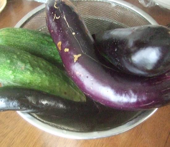 野菜畑のコスモス!....野菜の成長は順調です!_b0137932_1937935.jpg