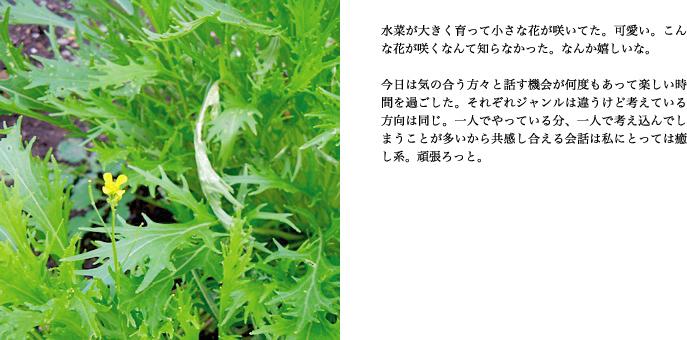 f0220343_16341221.jpg