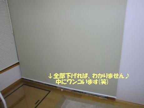b0206444_126236.jpg