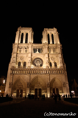 パリの夜景タクシーツアー_c0024345_8142593.jpg