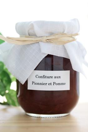 confiture Pioniere et pomme  ピオーネとリンゴのジャム_e0074251_14203390.jpg