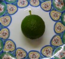 オレンジレモン!!_c0151053_15481162.jpg