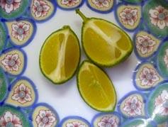 オレンジレモン!!_c0151053_15494771.jpg