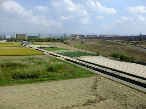休日ライド 池田~大山崎~流れ橋 サイクリングコースのご紹介_d0174462_1611773.jpg