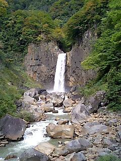 キノコ狩りツアー 最終日_e0159969_19212574.jpg