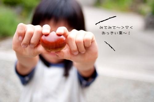 f0190004_17224280.jpg