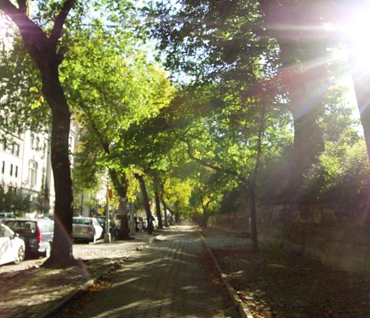 秋のニューヨーク、ミュージアム・マイルにお散歩へ_b0007805_45512.jpg