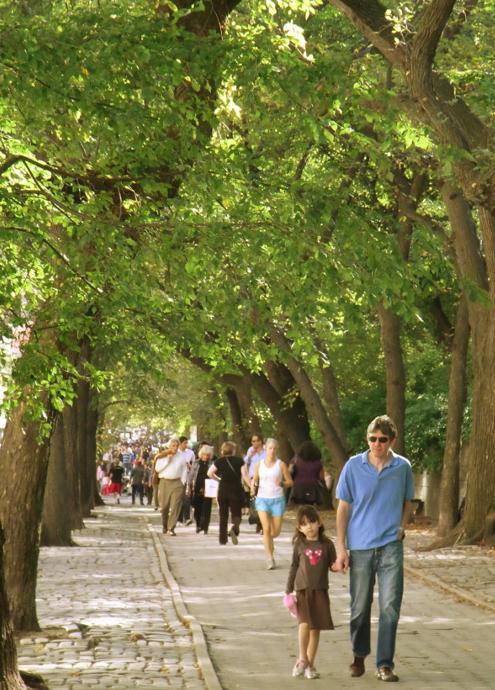 秋のニューヨーク、ミュージアム・マイルにお散歩へ_b0007805_5114926.jpg