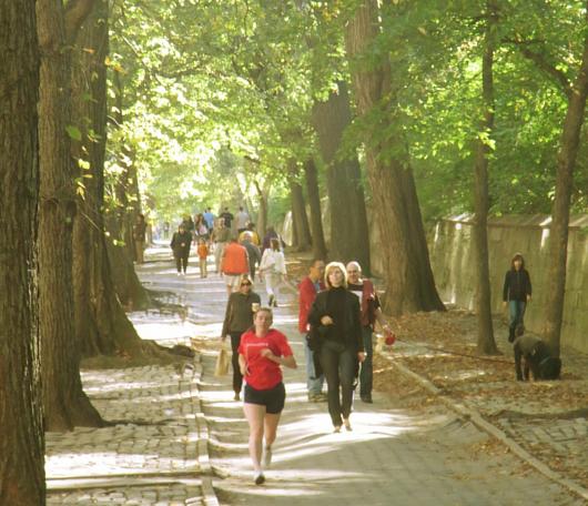 秋のニューヨーク、ミュージアム・マイルにお散歩へ_b0007805_534671.jpg