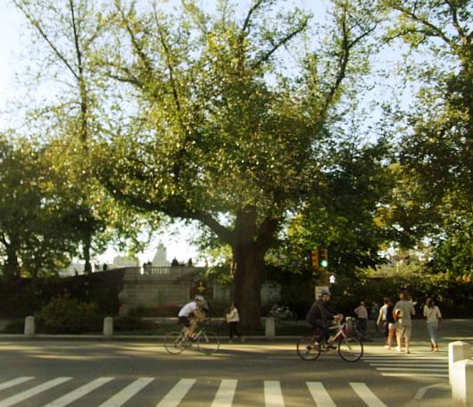 秋のニューヨーク、ミュージアム・マイルにお散歩へ_b0007805_562819.jpg