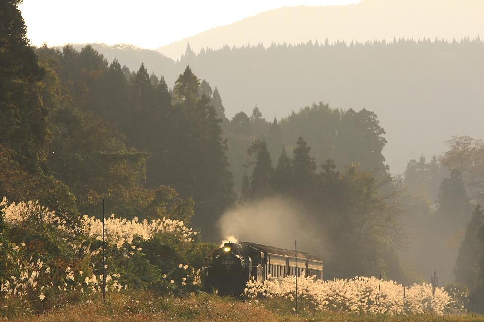夕陽に輝いて - 2009年秋 只見試運転 - _b0190710_2391616.jpg