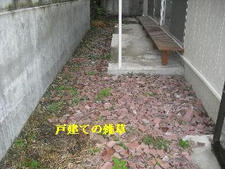 f0031037_20471246.jpg