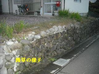 f0031037_2049319.jpg
