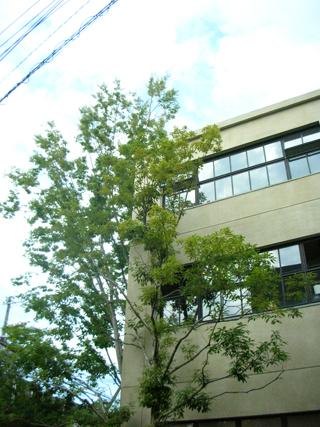 大阪 その2_b0183681_1114172.jpg