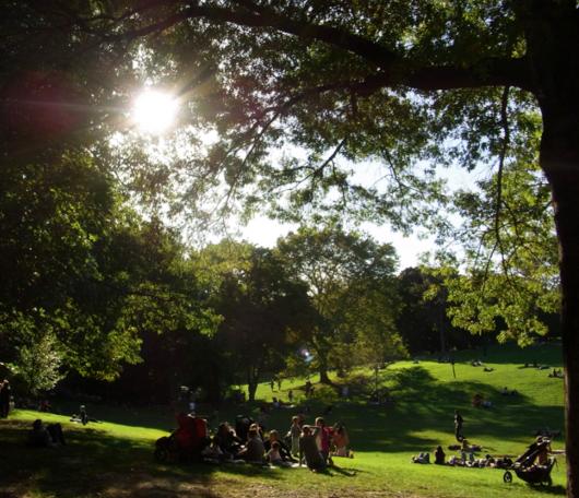 初秋のセントラルパークへお散歩に_b0007805_21511772.jpg