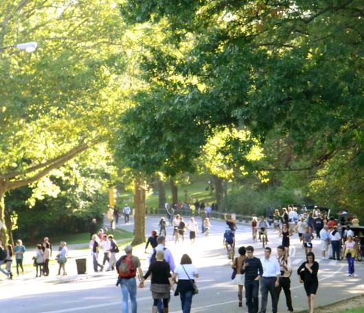 初秋のセントラルパークへお散歩に_b0007805_21514740.jpg