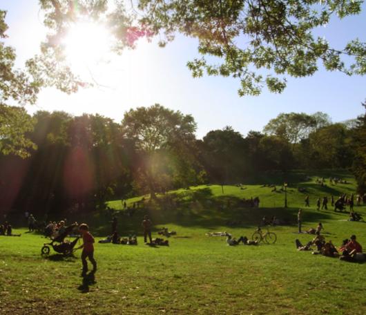 初秋のセントラルパークへお散歩に_b0007805_2213365.jpg