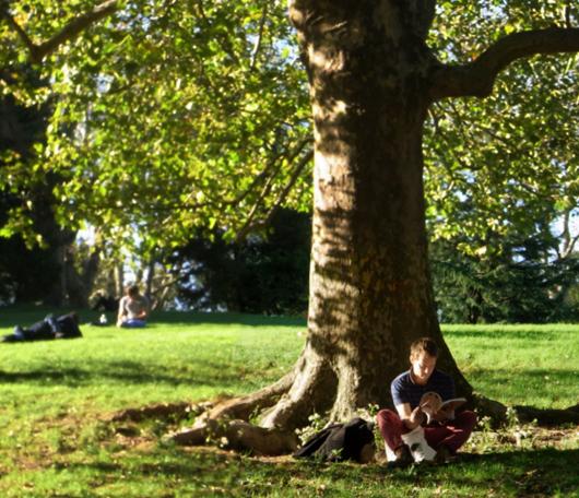 初秋のセントラルパークへお散歩に_b0007805_2285599.jpg