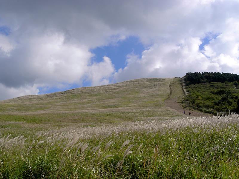 大分県はくじゅう、ミソコブシ山に行ってきました。その3_a0037907_2241342.jpg