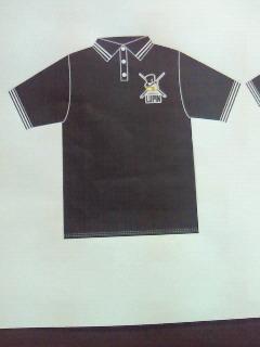 ポロシャツ_e0208633_2024084.jpg