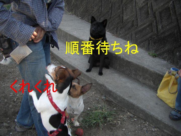 f0053952_21414971.jpg