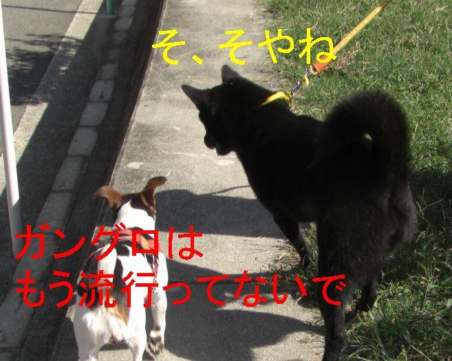 f0053952_21424384.jpg