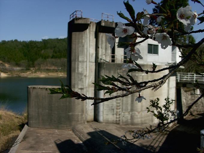 中国電力奥津発電所調整池/恩原ダム_f0116479_2238665.jpg