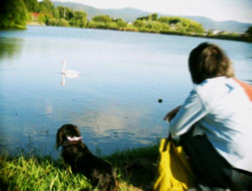 水辺の散歩道_d0077603_10505086.jpg